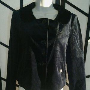 Ann Taylor Women's Blazer Jacket Blue  Button Up